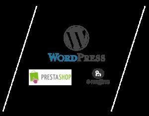 Création site internet Spécialiste WordPress Angers